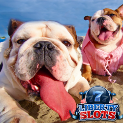Dog Days Slots Tournament Paying $500 in Daily Prizes